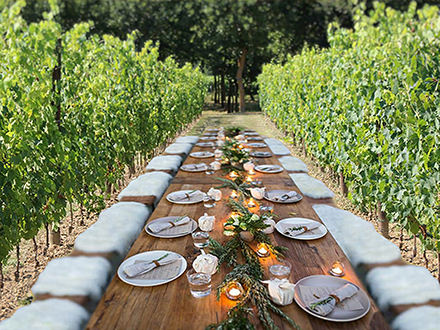 Romantic Lunch or Dinner in Vine Rows