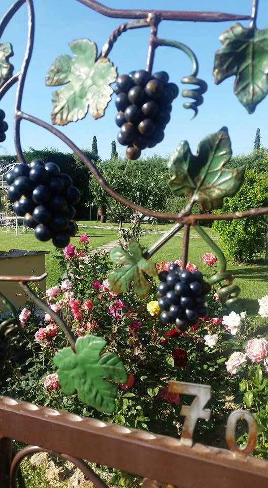 garden winery