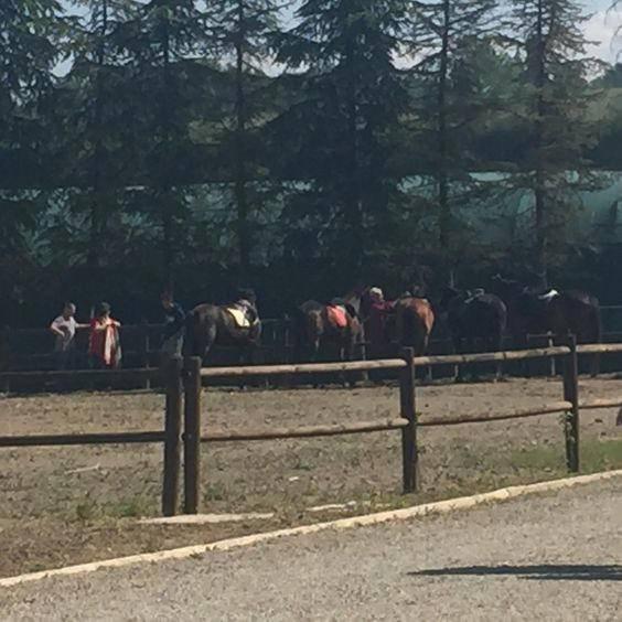 ride horse tuscany
