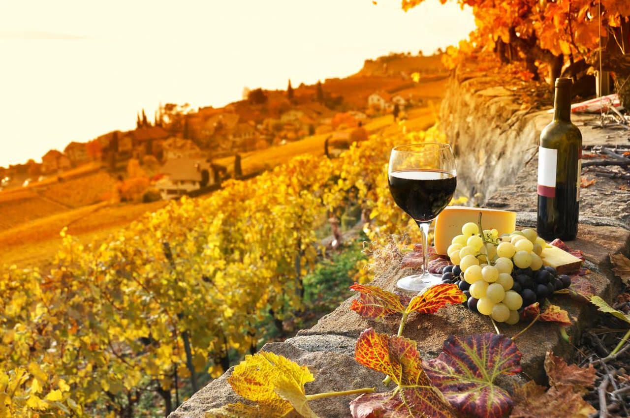 senset tuscany