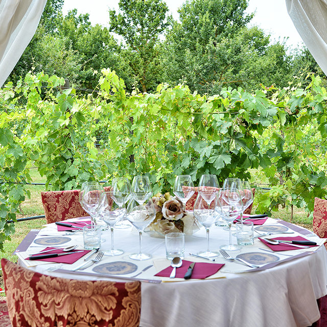 Overnight Stay with Vineyard Lunch and Wine Tasting