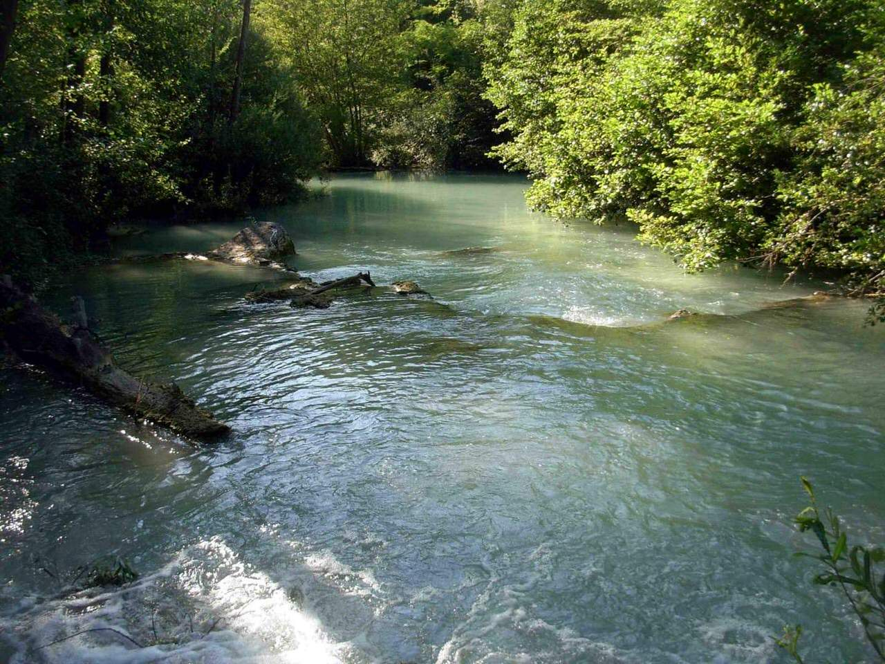 Elsa River