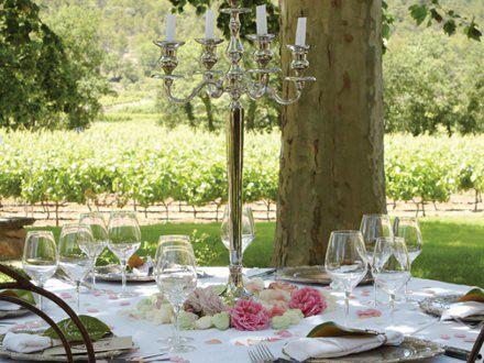Lunch in Vineyard
