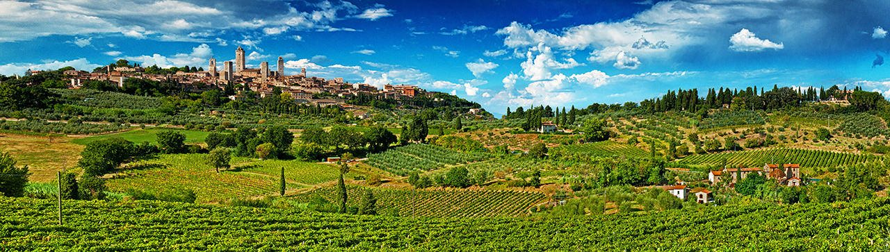 SanGimignano Vineyards
