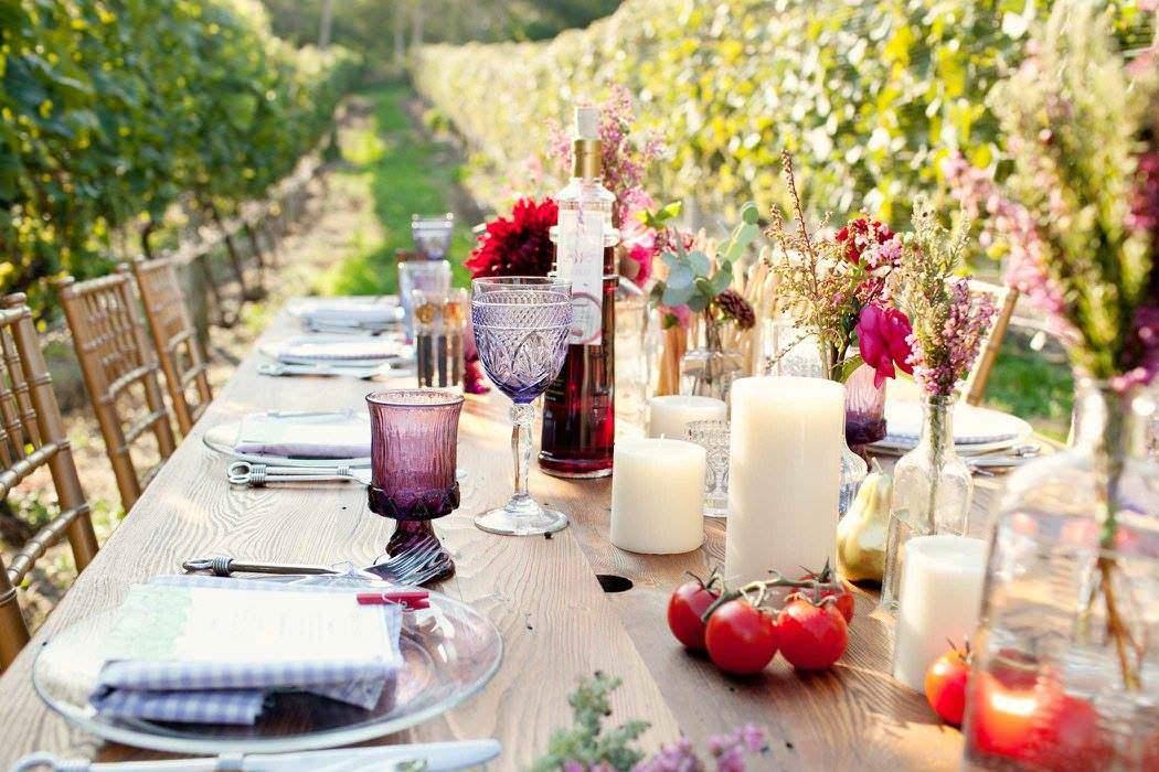 lunch vineyard
