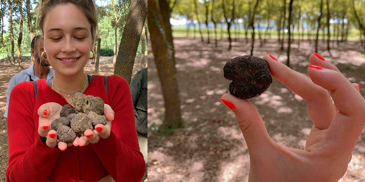 truffle-hunting-with-lunch