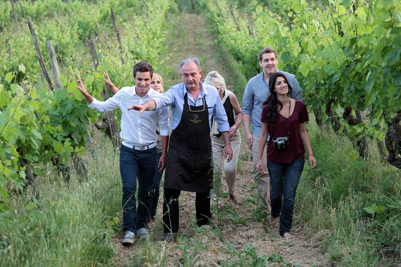 vineyard-visit-tenuta-torciano